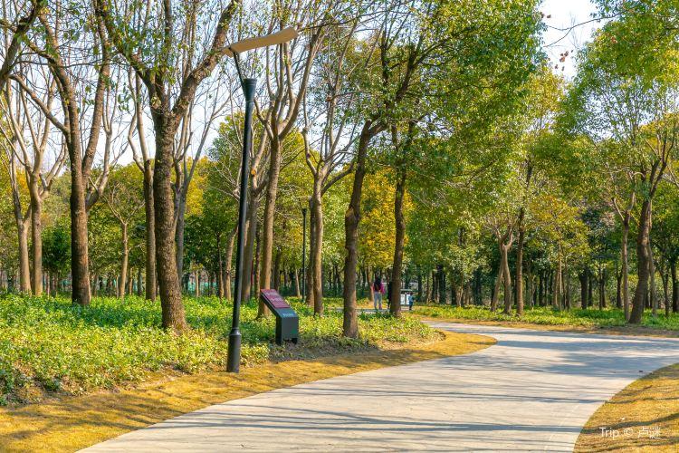Huaxia Culture Park1