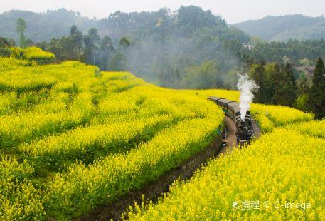Jiayang Little Steam Train