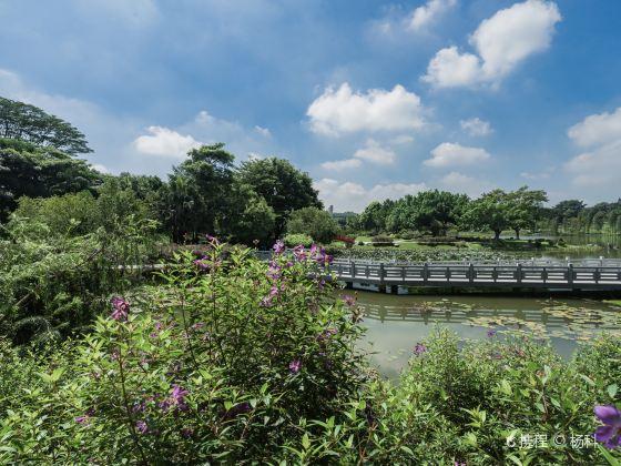 둥완(동관) 식물원