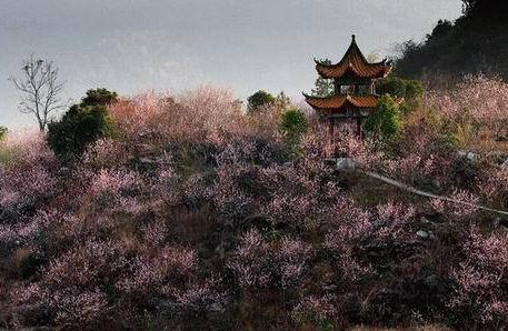 Dragon Palace Ecotourism Area
