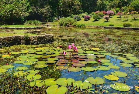 康提皇家植物園