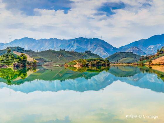 백조의 호수