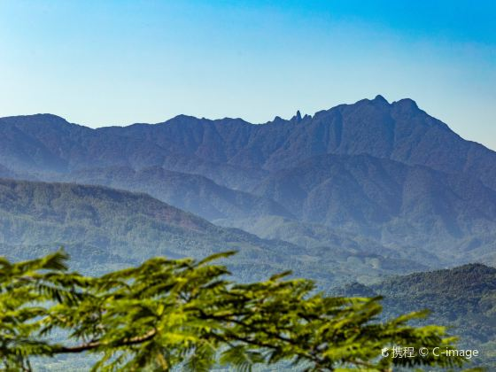 五指山國家級自然保護區