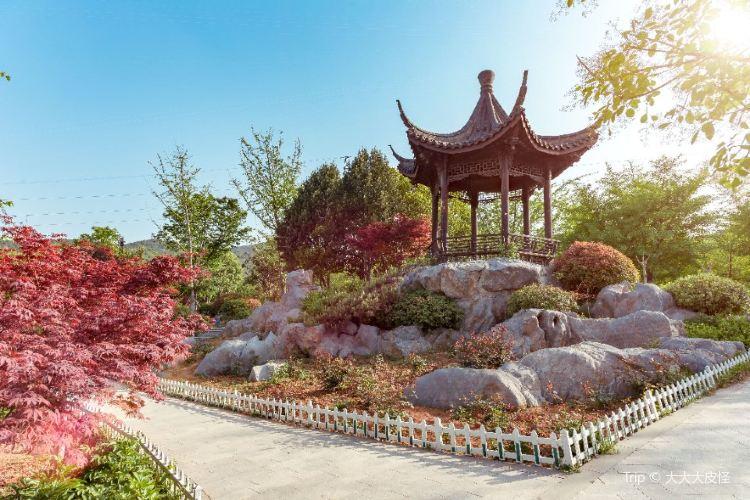 Quanshan Forest Park1