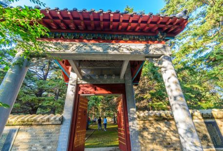 Nenjiang Gaofeng Forest Park