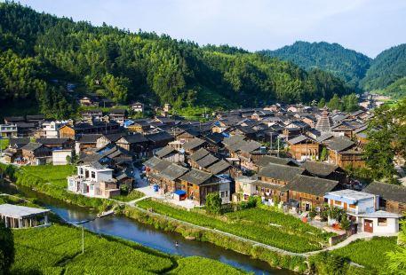 Qian Dongnan Miaozu Dongzu Zizhizhou Guoying Linchang Huahui Base