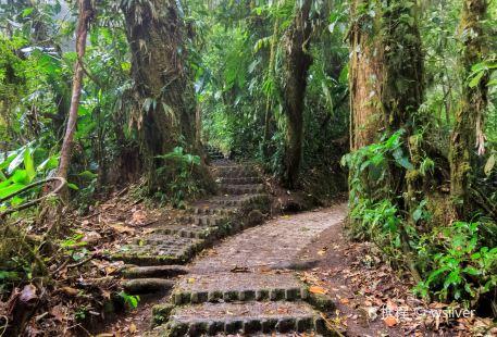 Las Quebradas Biological Center (Centro Biológico Las Quebradas)