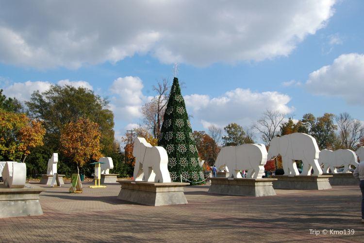 Memphis Zoo1