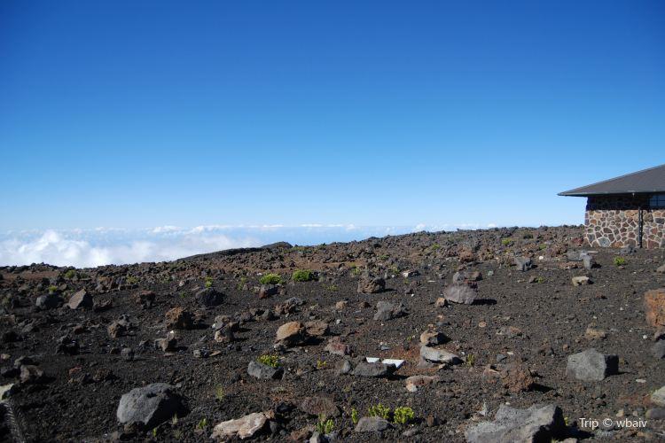 Maui To Go1