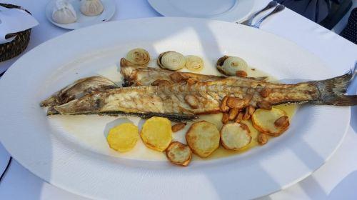 Calipso Fish