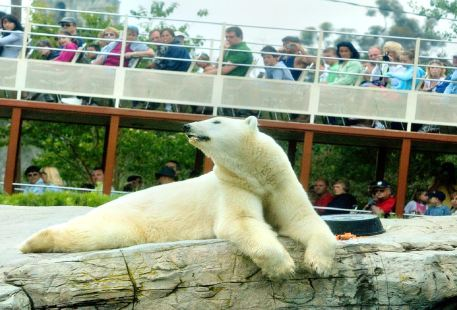 샌디에고 동물원