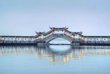 Ancient lotus bridge