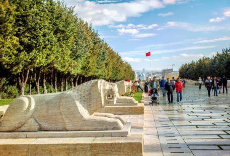 Lion Road