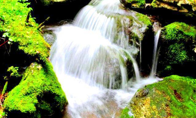 威虎山國家森林公園