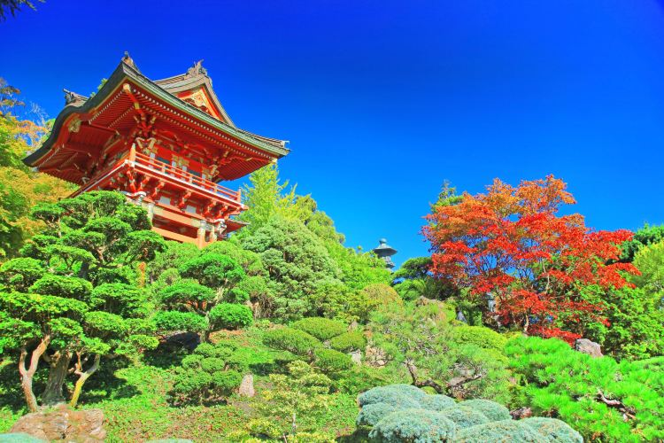 Japanese Tea Garden Travel Guidebook Must Visit Attractions In San Francisco Japanese Tea Garden Nearby Recommendation Trip Com