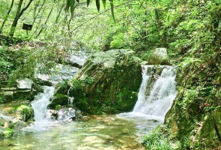 桃花沖森林公園