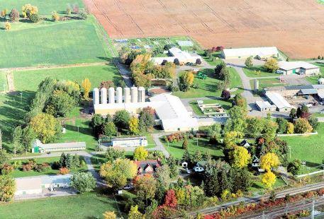 Macdonald Campus Farm