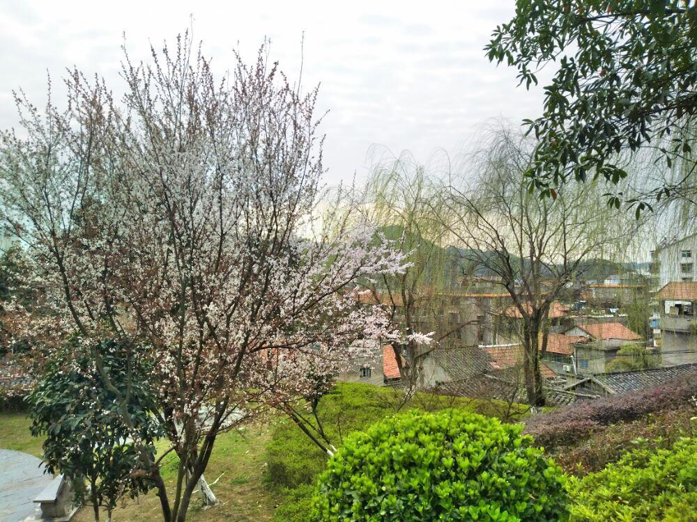 辰溪勝利公園