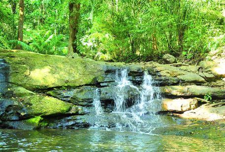 Soberania National Park