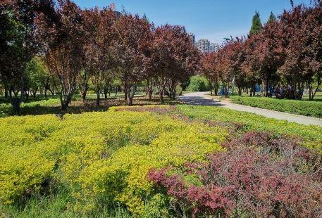 德惠市植物園