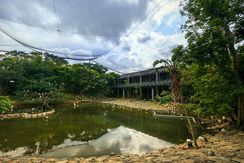 名護自然動植物公園