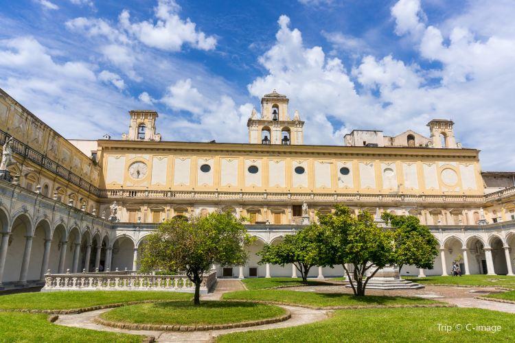 Certosa e Museo di San Martino1