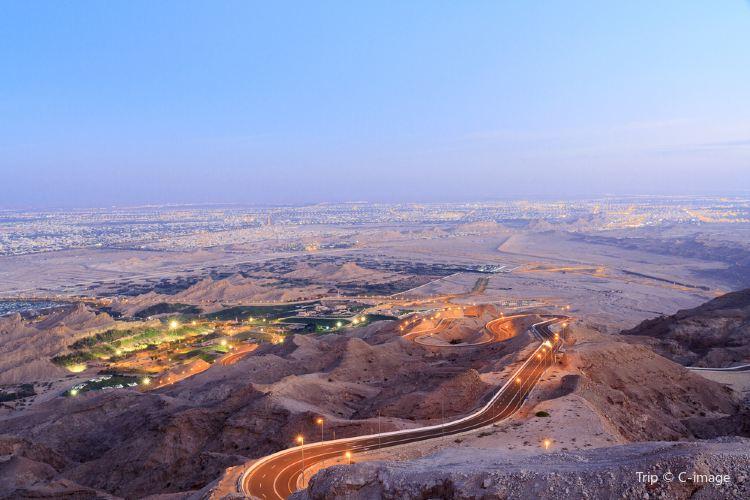 Al Ain Oasis1