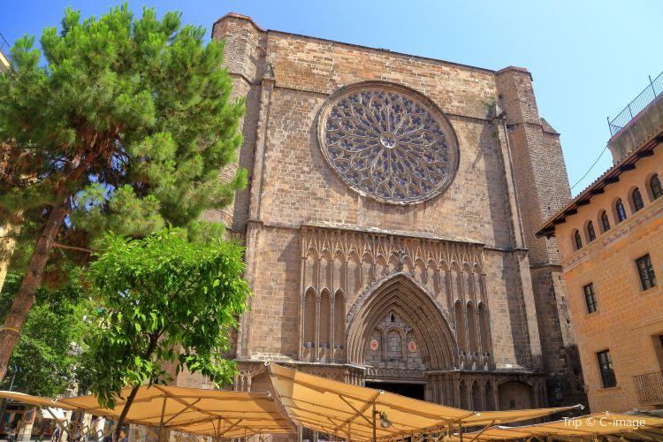 松樹聖母聖殿2