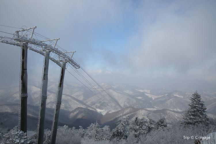 Yongpyong Ski Resort2