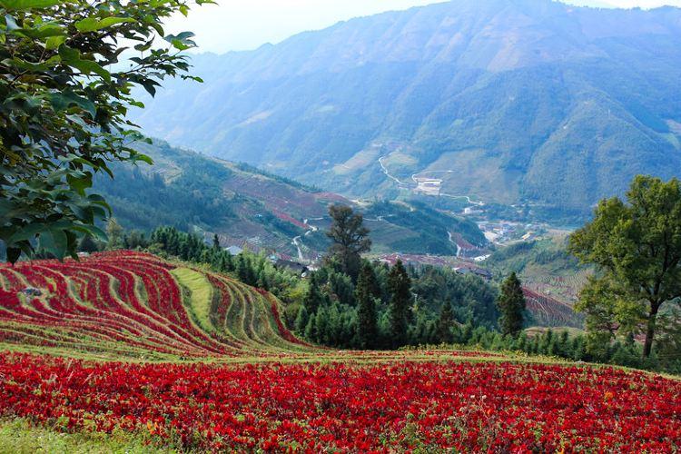 Buni Titian Jia Wu Waterfall Sceneic Area2