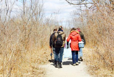 Toronto Aboriginal Eco Tours