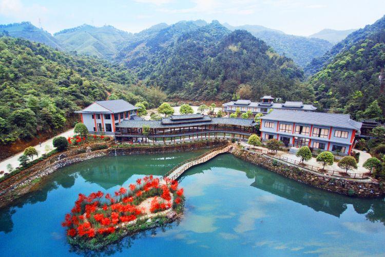 홍시 관광단지1