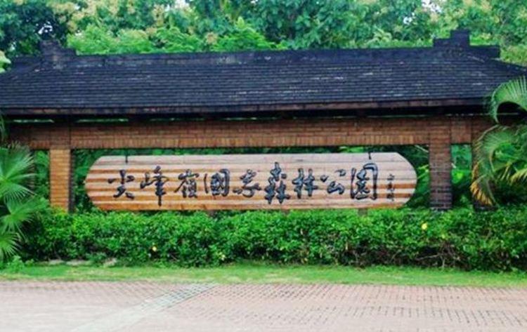 尖峰嶺國家森林公園4