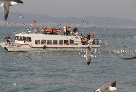 Shenlong Xiandao Sea Theme Park