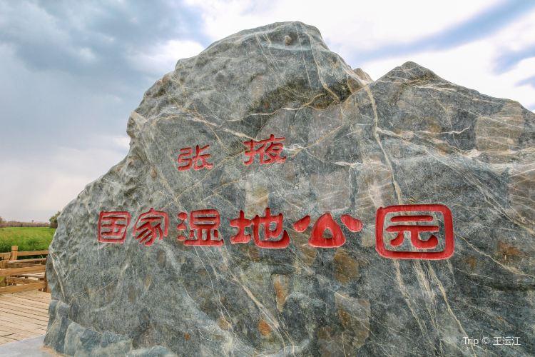 Zhangye National Wetland Park4
