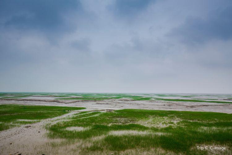 항저우 만 국립습지공원1