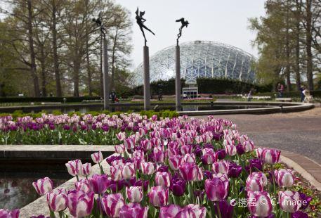 密蘇里植物園