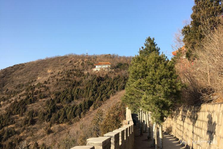 Mangshan Forest Park1