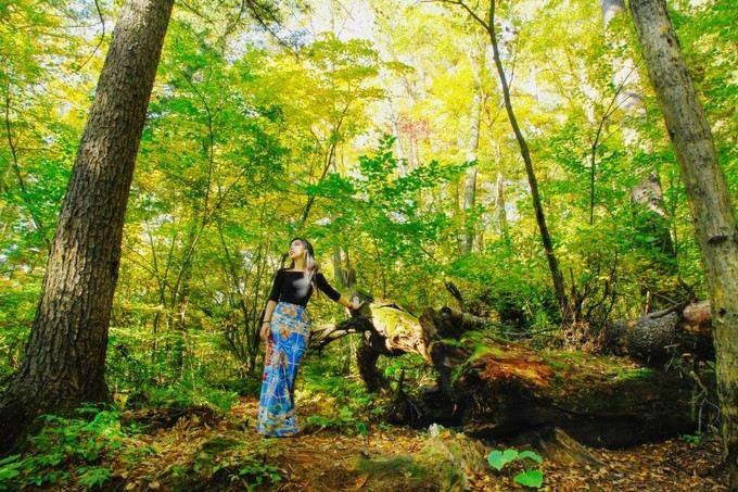 Huoshankou National Forest Park2