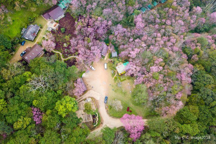 蘇州上方山國家森林公園4