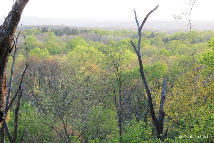 Virginia Kendall Park