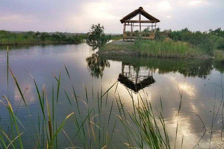 香妃湖花卉莊園