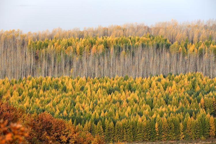 만톈싱 국립삼림공원2