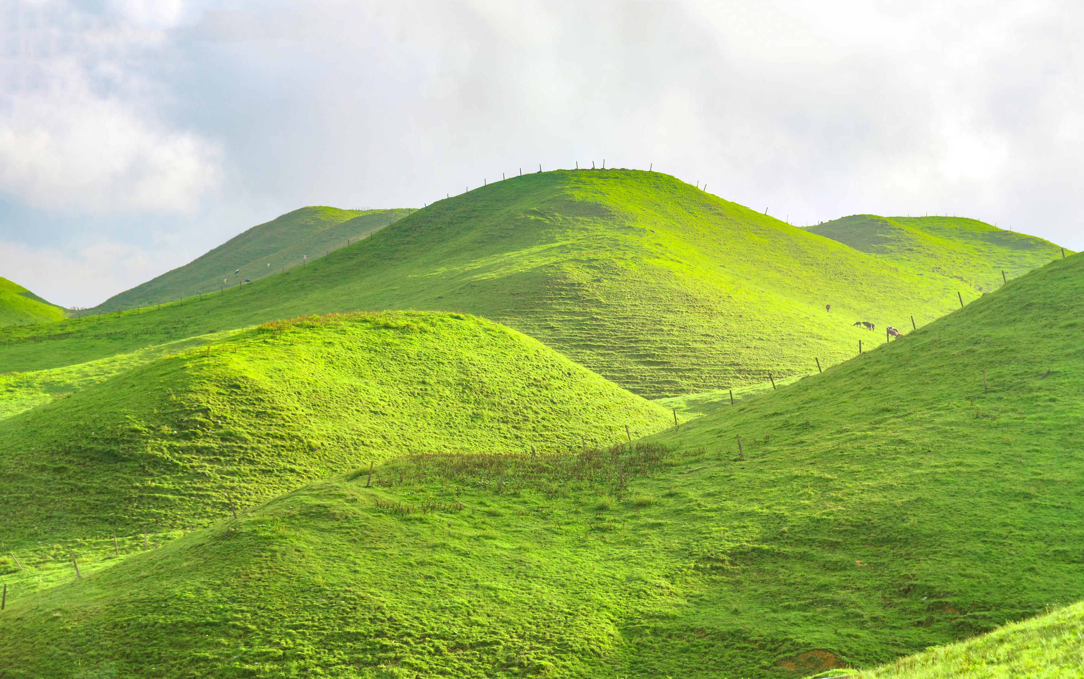 Yunvxi Scenic Area