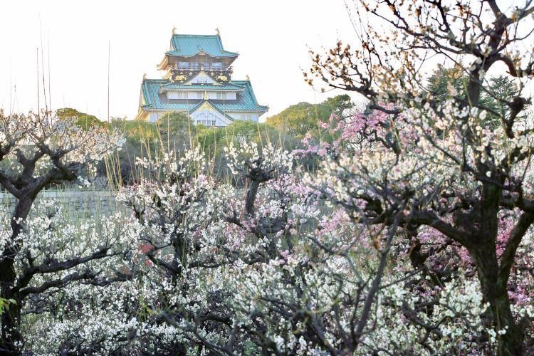 城 梅林 大阪