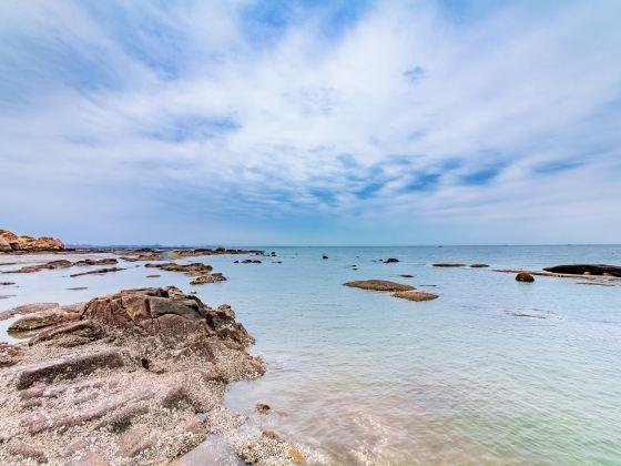 白沙灣黃金海岸