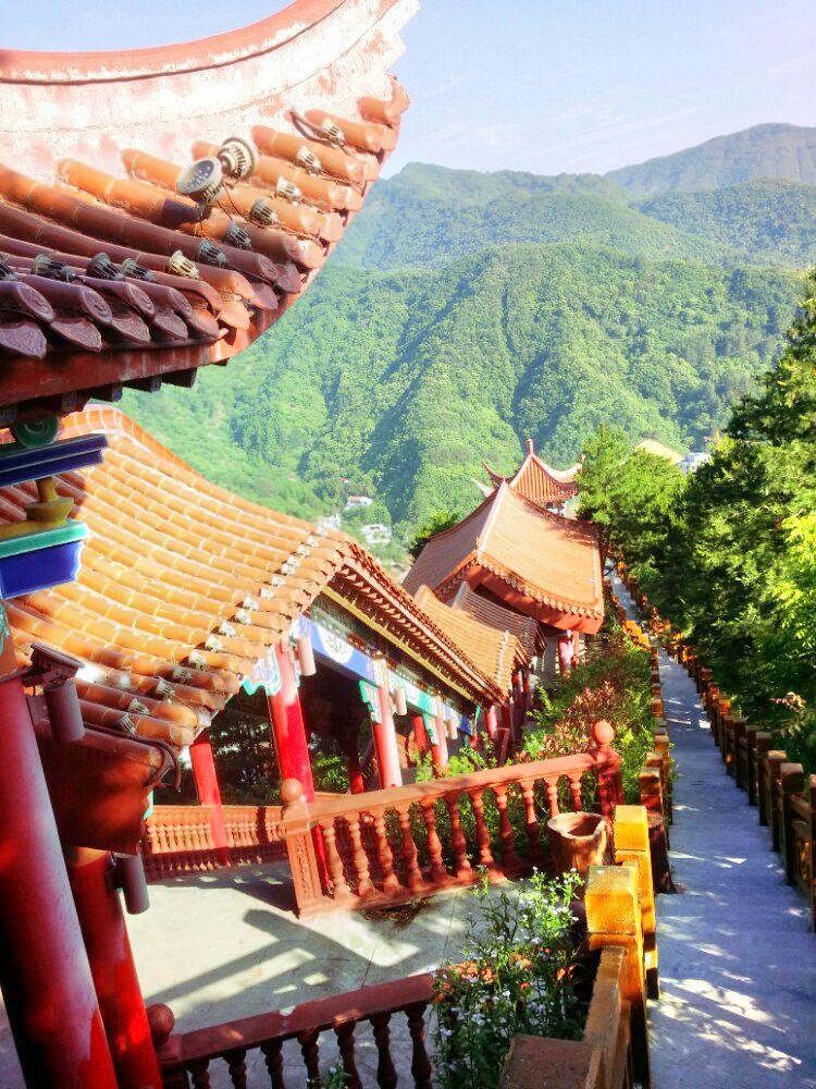 觀音山大熊貓自然保護區