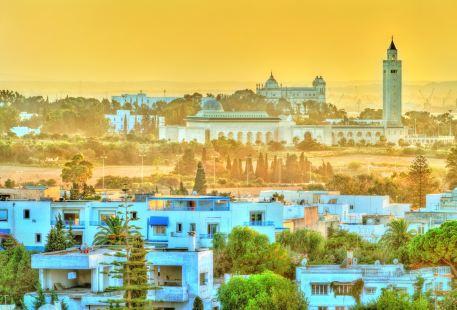 突尼斯舊城區