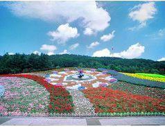 """Flower Clock """"Hanakku"""""""