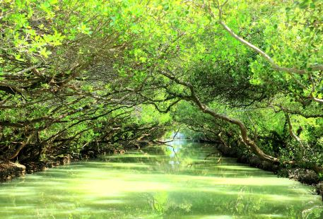 Sicao Wetland Reserve